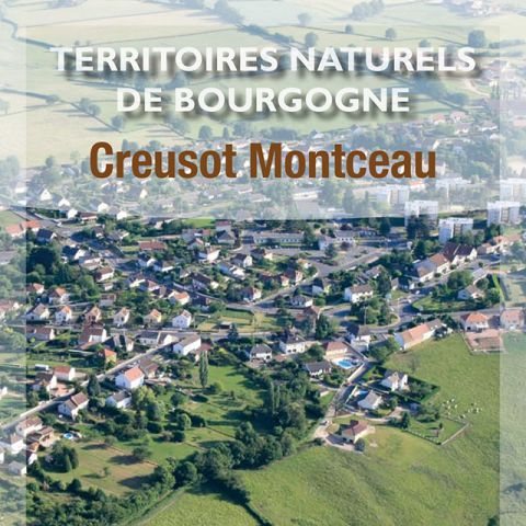 Creusot Montceau